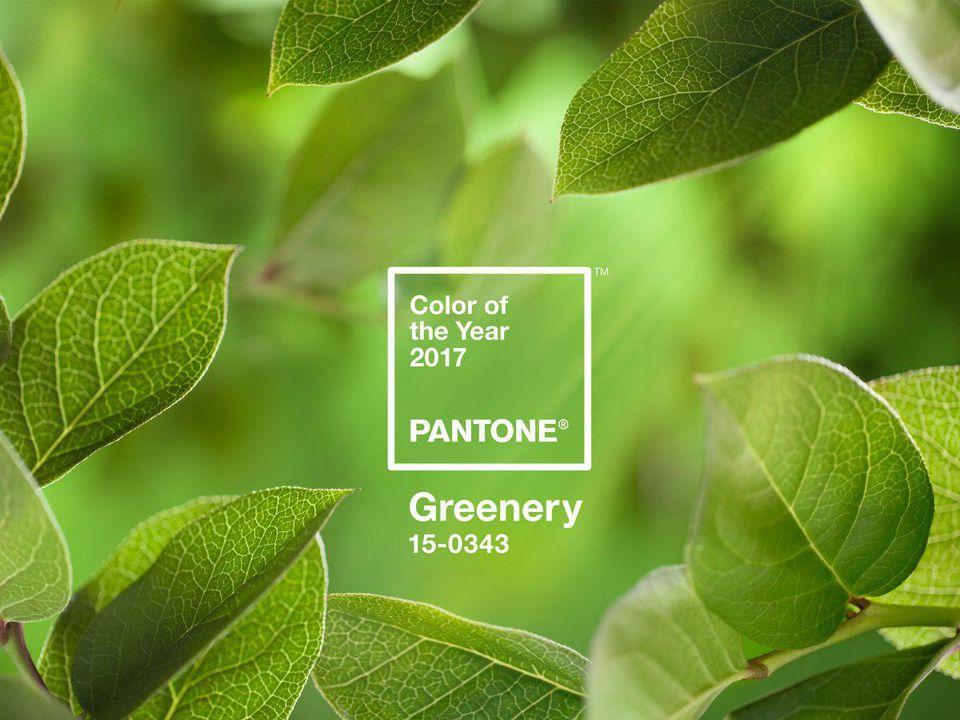 2017 PANTONE